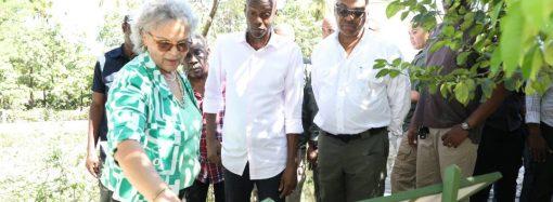 Haïti-Environnement: Jovenel Moïse mise sur le reboisement et s'active