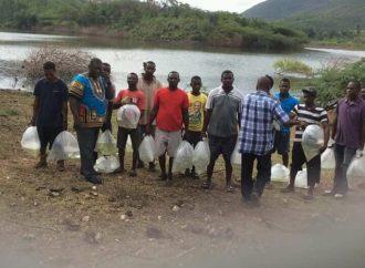 Nippes-Pêche : des milliers alevins lâchés dans l'étang de l'Anse-à-Veau