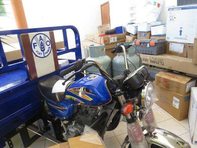 Haïti : distribution de matériel pour appuyer la filière laitière