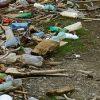 L'urgente nécessité de sauver notre environnement !