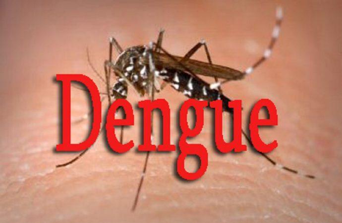 Haïti sous la menace de la fièvre dengue, la DSO rassure et passe des consignes