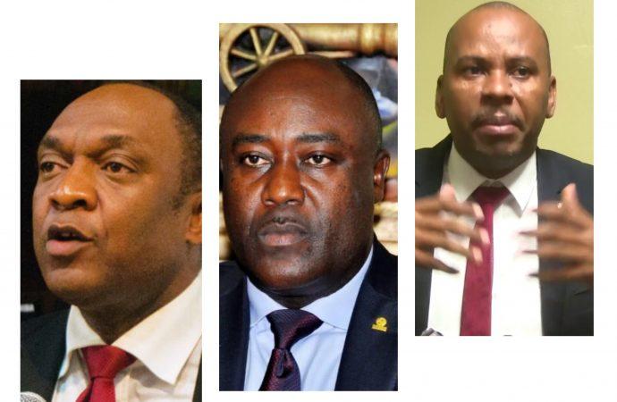 Quand les parlementaires prétendent remplir leur devoir de contrôle en fin de mandat