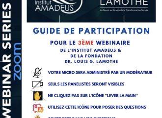 COVID-19 : Relance économique des pays du Sud, thème du 3ème Webinaire qu'organisent la FLGL et l'Institut Amadeus ce 12 mai