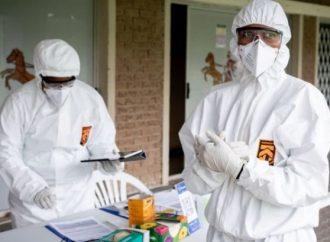 Covid-19 : Haïti enregistre plus de 900 personnes infectées
