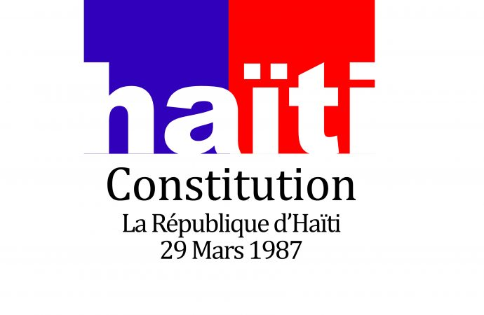 Élaboration d'une nouvelle constitution : la diaspora en droit de prendre part à la vie politique