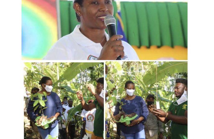 Reboisement : Martine Moïse s'engage dans la plantation d'arbres fruitiers
